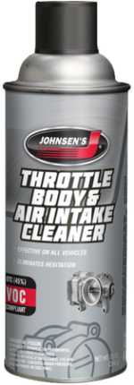 throttle body and air cleaner
